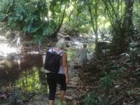 Thaitema - djungelvandring 1