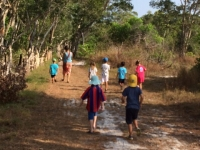 Promenerar till Arunas eco farm