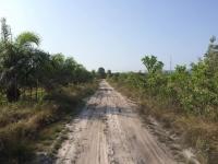 Vägen som leder till Arunas eco farm