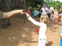 elefantridning-o-v-46-046
